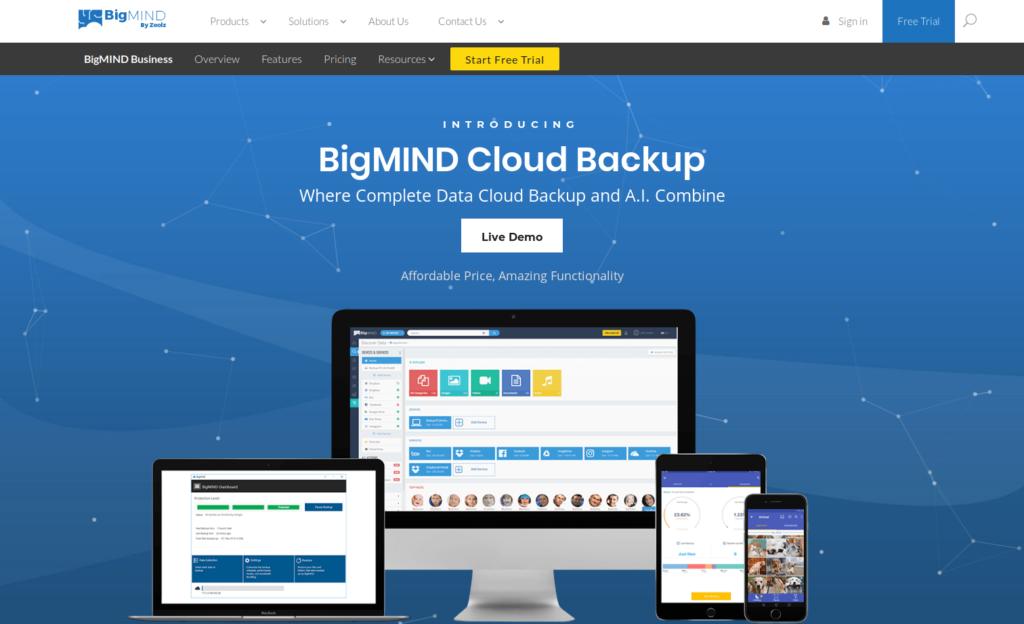 BigMind Backup